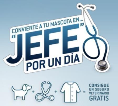 Promocion Mascota Veterinaria