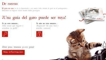 Guia Gratis para gatos