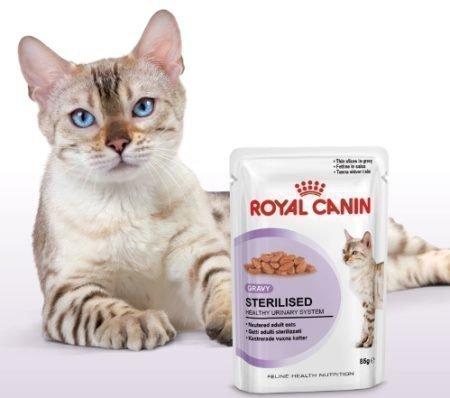 Muestras gratis de alimento h medo para gatos regalos y - Alimento para gatos esterilizados ...