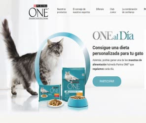 dieta-personalizada-gato-muestra
