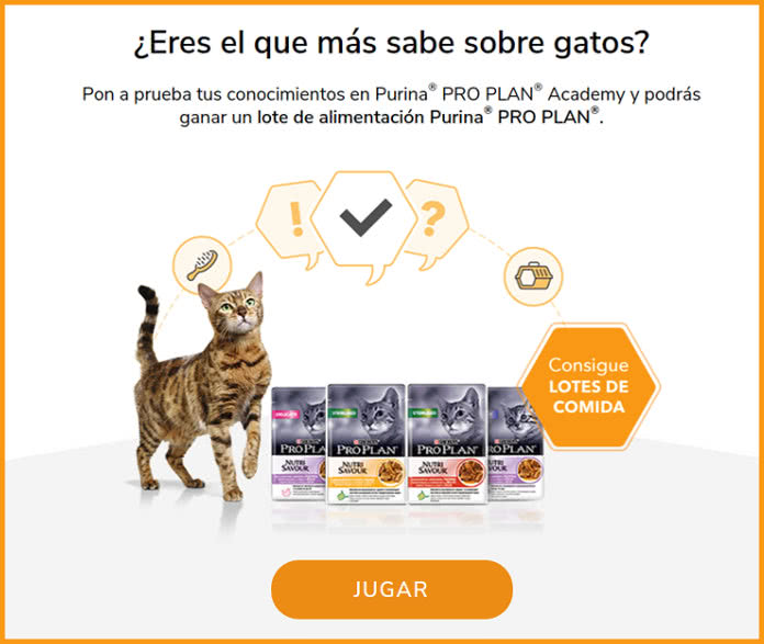 concurso-lote-alimentacion-purina-pro-plan-gatos