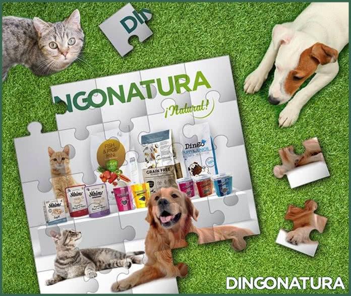 Dingonatura sortea 3 meses de alimentación para perros y gatos