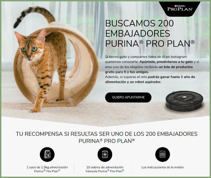 Purina busca 200 embajadores gatunos